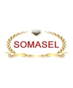 Somasel